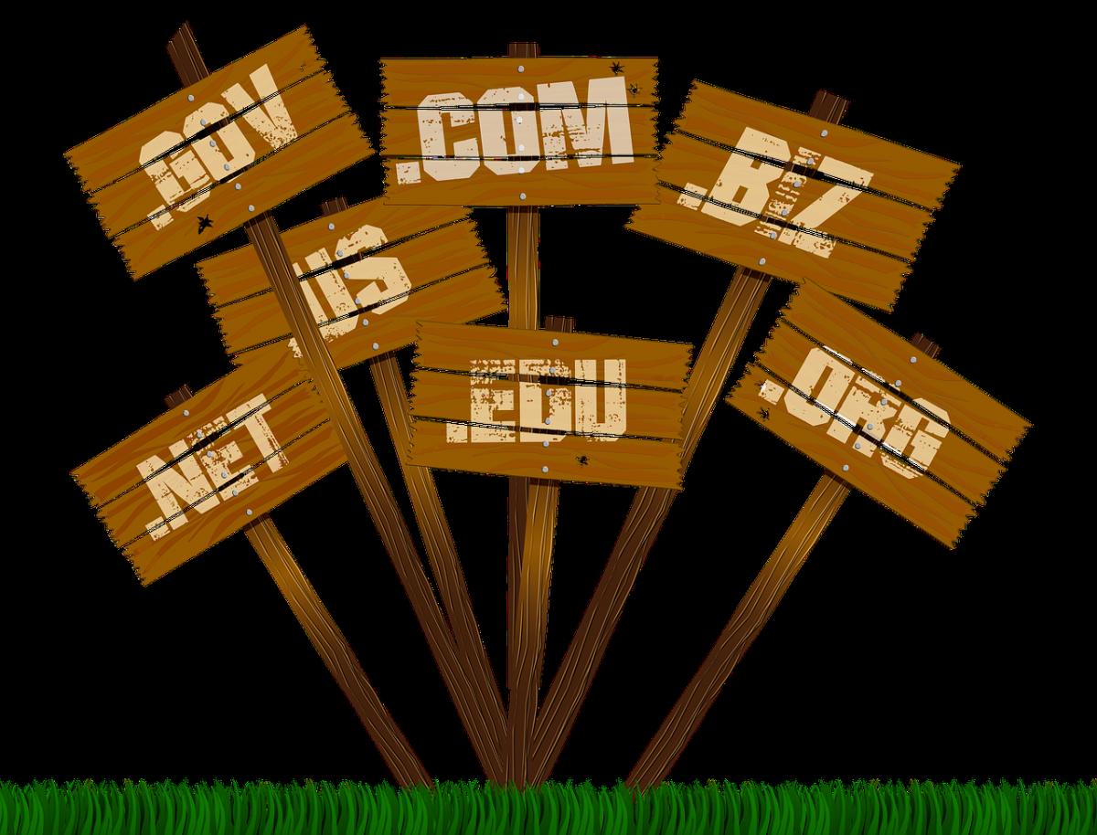 Noms de domaine abandonnés vs noms de domaine renouvelés : des constats ?