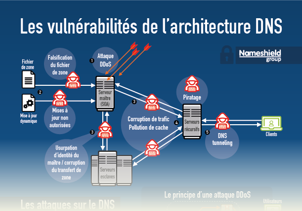 Infographie Les vulnérabilités du DNS - Nameshield