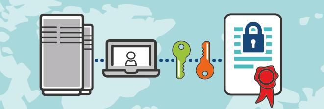 [INFOGRAPHIE] Les mesures simples à mettre en place pour protéger efficacement vos noms de domaine