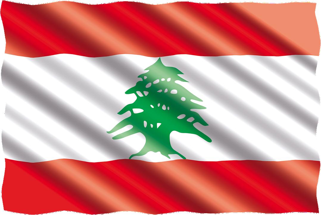Assouplissement des règles de dépôt de nom de domaine au Liban
