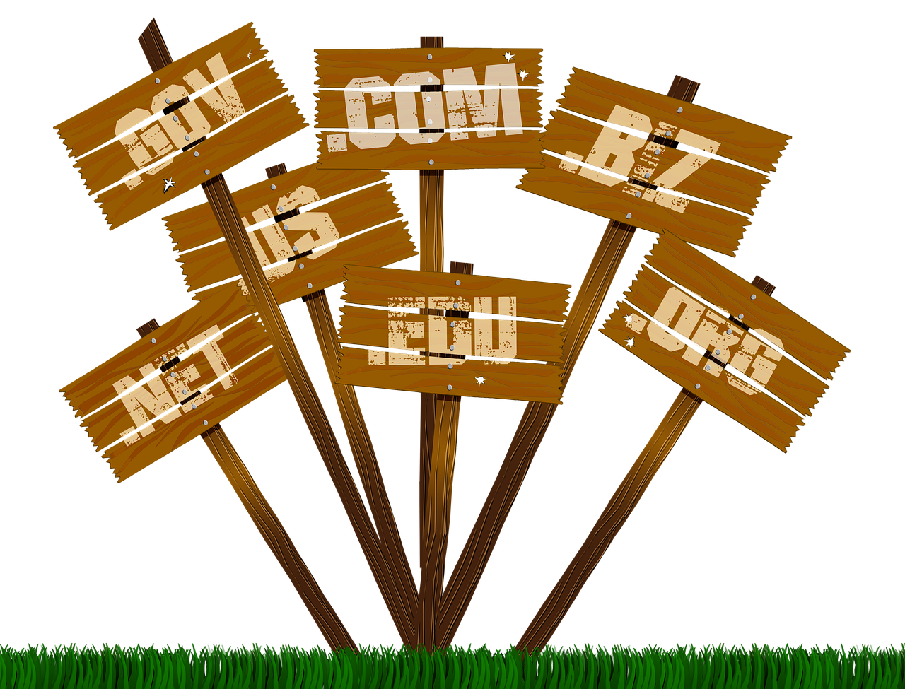 Abandoned domain names vs renewed domain names - Nameshield
